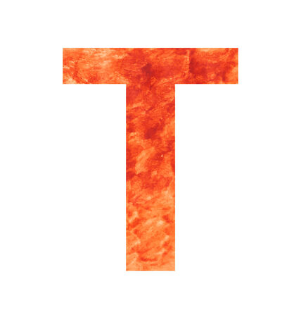 t letter with texura shaped brown earth or stone Vector