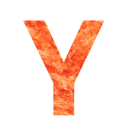 y letter with texura shaped brown earth or stone Vector