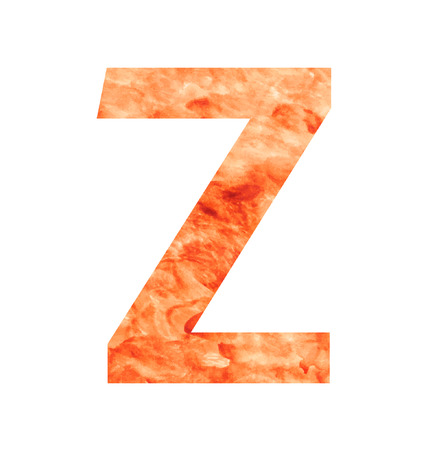 z letter with texura shaped brown earth or stone Vector