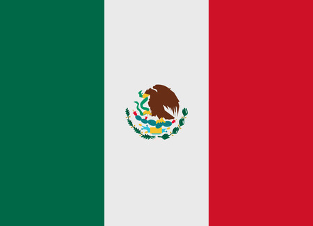 flag mexico: Flag of Mexico vector illustration