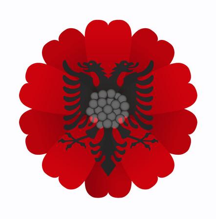 illustration of flower Flag Albania