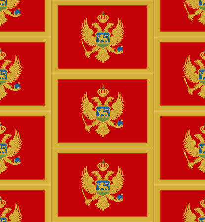 montenegro: Flag Montenegro texture vector illustration Illustration