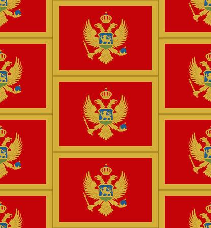 Flag Montenegro texture vector illustration Illustration