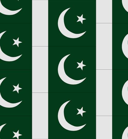 flag of pakistan: Flag Pakistan texture vector illustration