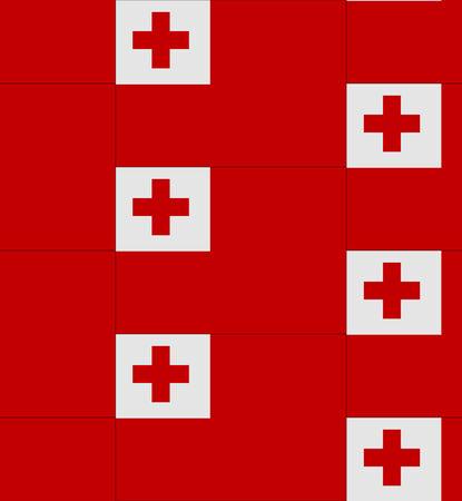 tonga: Flag Tonga texture vector illustration