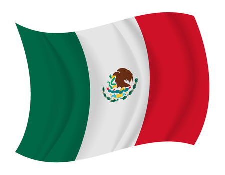 mexico culture: design Mexico flag waving vector