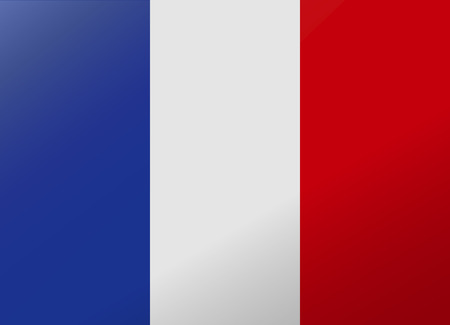 reflection flag france