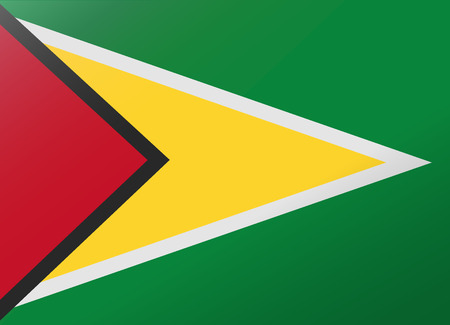 guyana: reflection flag guyana