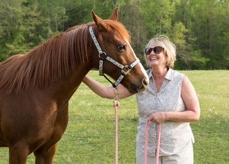 older Arabian  brown and white mature horse in pasture with happy woman Reklamní fotografie