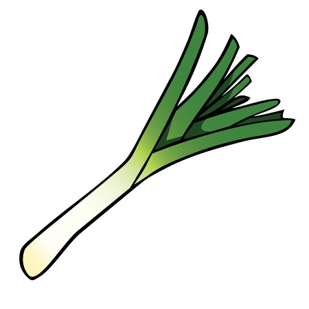 Cartoon leek Vector