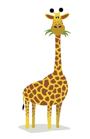 frontal: Cartoon giraffe Illustration