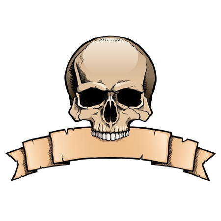 Colored human skull with a ribbon banner. Stock Vector - 21600179