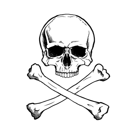 Black and white human skull and crossbones. Stock Vector - 21778143