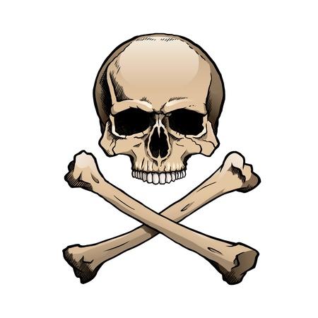 Colored human skull and crossbones.