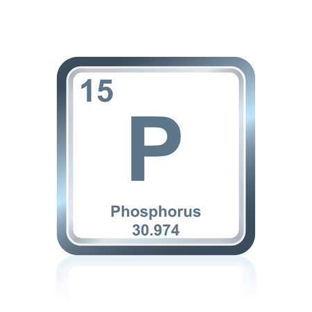 Symbole de l'élément chimique phosphore vu sur le tableau périodique des éléments, y compris le numéro atomique et le poids atomique.