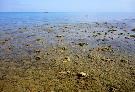 seascape of panjang island scenery in Central Java photo