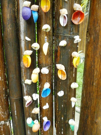 bamboo wall hanging made   8203;  8203;of shells photo