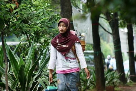 herboristeria: herbolario jamu mujer gendong en la calle con una gran ciudad Indonesia