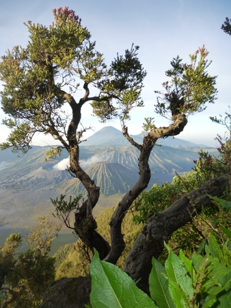 Mount Bromo National Park, east Java, Indonesia