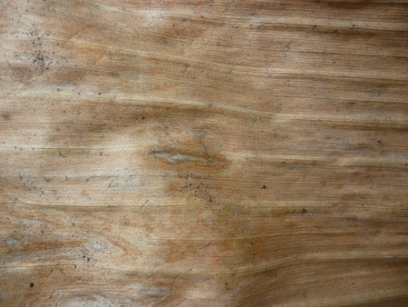 background from banana tree dry leaf close up photo