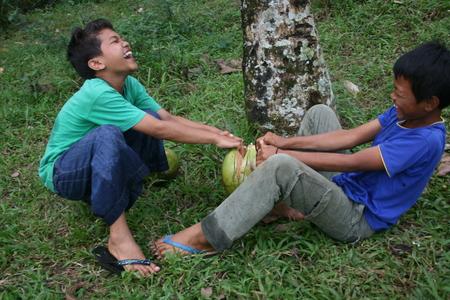 uniting: two children unite to break the coconut in Sukabumi, west Java, Indonesia