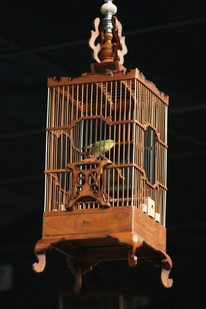 confined space: wood birdcage hanging on the bird contest event