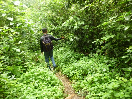 low section view: man during hiking excursion in woods, walking in a queue along a path. Low section view