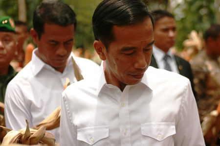 President Jokowi during a visit in Blora, corn harvest, central Java, Indonesia 新聞圖片
