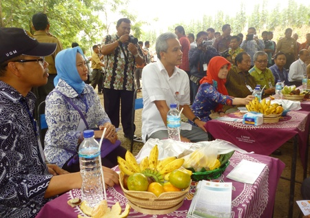governor: Central java governor ganjar pranowo in Blora, central java, indonesia. Editorial