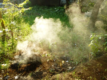 detrimental: Plants plastic and hazardous meterials on fire emitting toxic and poisoinous fumes and polluting environment in indonesia