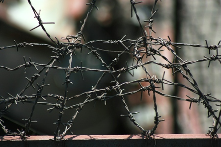 to thrash: detail of barbed wire Stock Photo