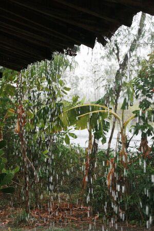 heavy rain: Heavy rain on roof