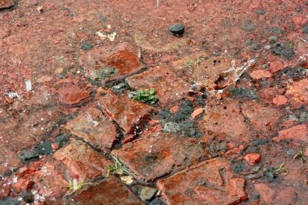 heavy rain: Heavy rain on gravel Stock Photo