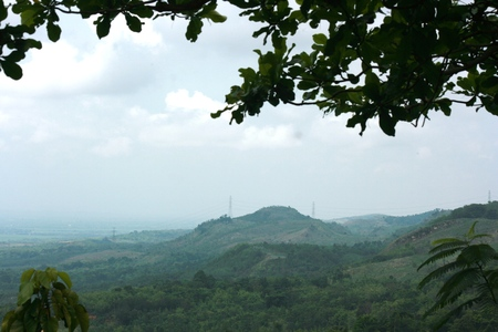 holz: nature view from  Jati Pohon located in Grobogan district, Central Java Stock Photo