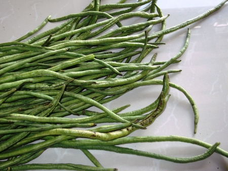 long beans: Long green beans isolated on white