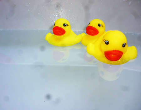 rubber duck: three yellow rubber duck swimming on water Stock Photo