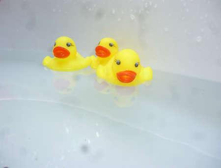 pato de hule: tres de color amarillo pato de goma nadando en el agua