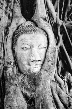 Black and white of Buddhas head in the Bodhi Tree photo