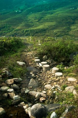 Footpath trail in the lush mountain trails of Sapa, Vietnam Stock Photo