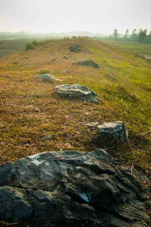 Trail of rocks in a meadow.