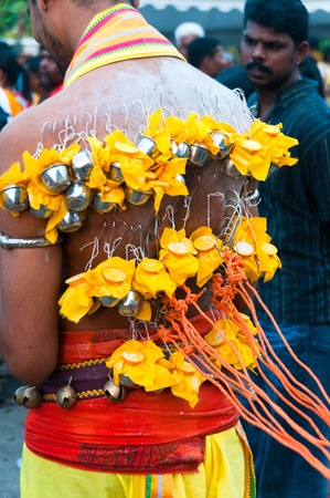 20 January 2011, Kuala Lumpur, Malaysia: A Hindu devotee carrying miniature milk pots on hooks embedded in his flesh as part of a thanksgiving act during the annual Thaipusam festival.