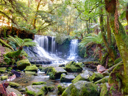 Russell Falls in Mount Field National Park in Tasmania Australia is famous for its glow worms.