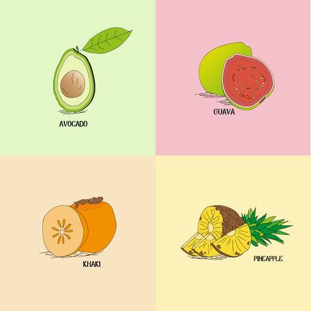 4 つの異なる熱帯果物イラスト ボード
