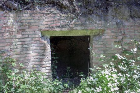 ade: a detail of a remains of a brick construcction with vegetation Stock Photo