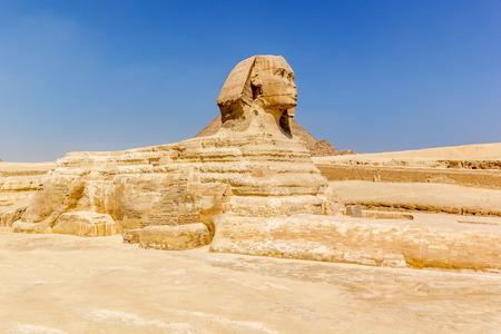 egyptology: a horizontal view of the Sphinx ,Giza, Egypt