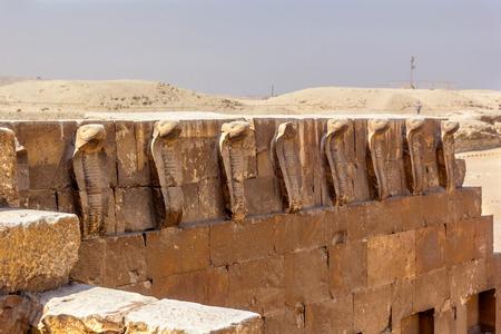 egyptian cobra: una visione orizzontale di alcuni cobra della tomba di Djoser, Saqqara, in Egitto