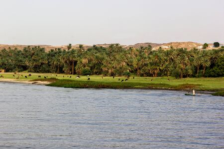 a horizontal view of a Nile river landscape, Egypt