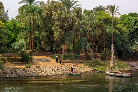 nile river: a horizontal view of a Nile river landscape, Egypt