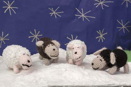 snowed: a horizontal frontal view of some sheep in a snowed set