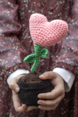 hearted: a vertical frontal view of a hearted flower being held by the hands of a little girl